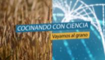 Cocinando con ciencia